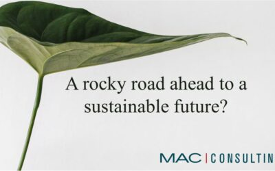 A rocky road ahead to a sustainable future?